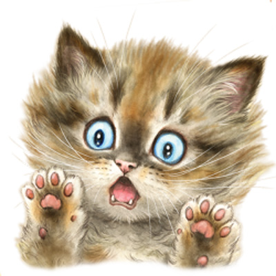 T-shirt i barnstorlek med Kattmotiv