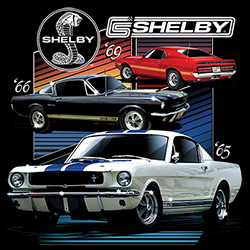 T-shirt Various Shelby