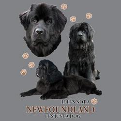 Figursydd T-shirt med Newfoundland