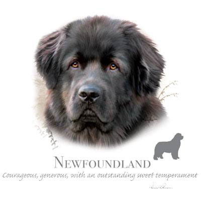 T-shirt med Newfoundland