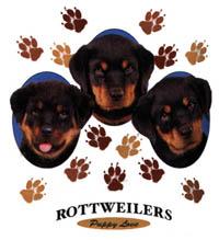 T-shirt i barnstorlek med Rottweiler