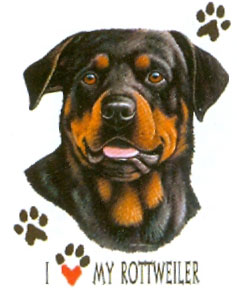 T-shirt with Rottweiler