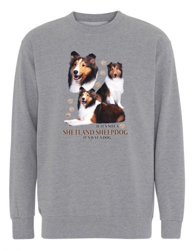 Collegetröja med Shetland Sheepdog
