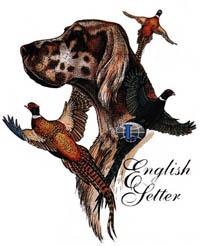 T-shirt med Engelsk Setter
