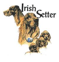 T-shirt med Irländsk Setter