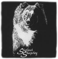T-shirt med Shetland Sheepdog