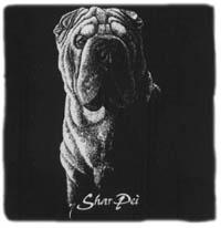 T-shirt med Shar Pei