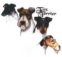 T-shirt med Foxterrier