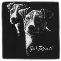 T-shirt med Jack Russel Terrier