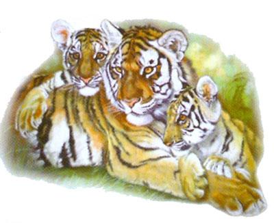 T-shirt med Tigrar