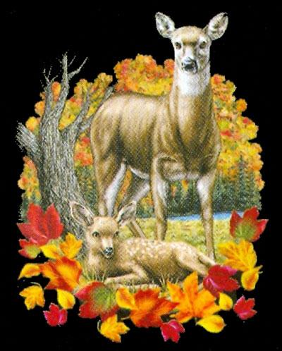 V-ringad t-shirt med Rådjur
