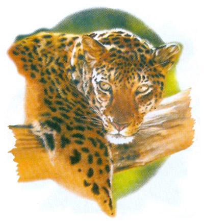 T-shirt i barnstorlek med Leopard