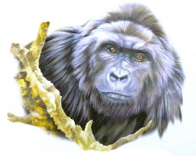 T-shirt med Gorilla