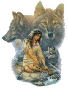 Collegetröja med varg och indianmotiv
