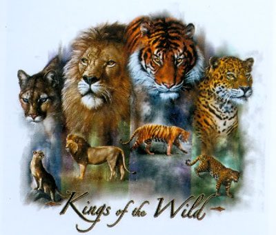 T-shirt Kings of the Wild