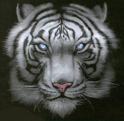 T-shirt med Tigermotiv