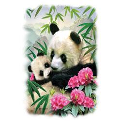 T-shirt i barnstorlek med Panda