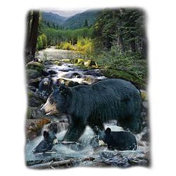 T-shirt i barnstorlek med Björnar