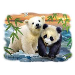T-shirt i barnstorlek med Björn o Panda