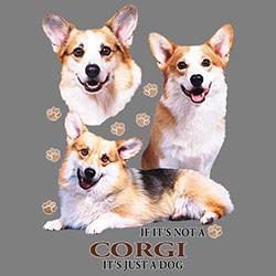 Figursydd t-shirt med Welsh Corgi