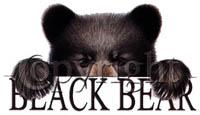 T-shirt i barnstorlek med björnmotiv