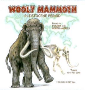 T-shirt med Mammut