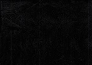 Långhårig päls svart