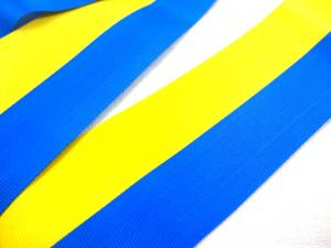 B387 Grosgrain Ribbon yellow/blue 40 mm (3 m)