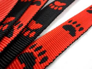 B443 Polypropylene Webbing Paws 20 mm red