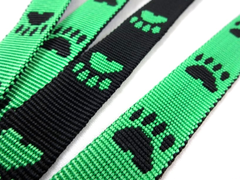 B443 Polypropylene Webbing Paws 20 mm green