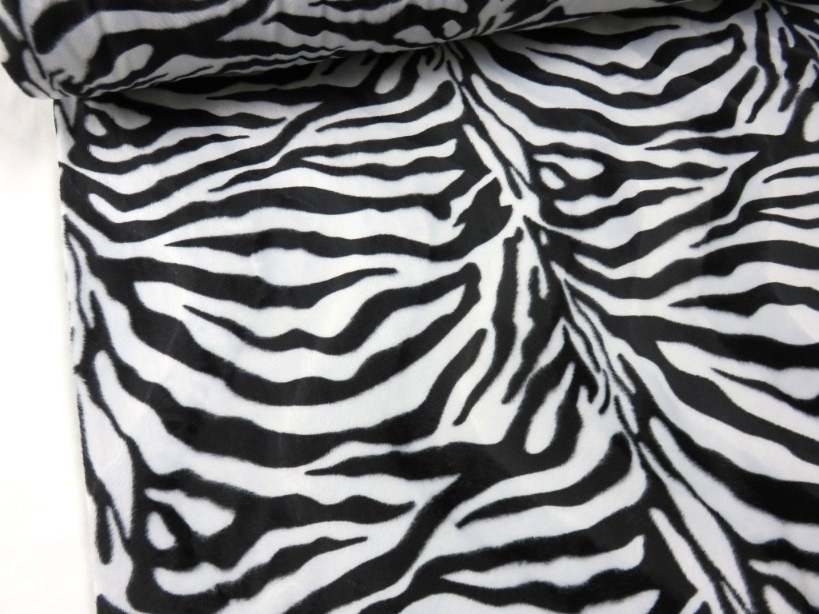 Velbour zebra