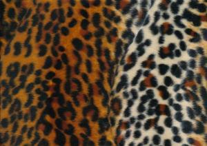 Velbour gepard