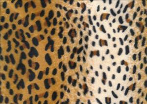 P108 Velbour Gepard