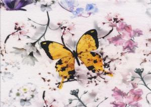 T2226 Jersey Fabric Butterflies in Bloom