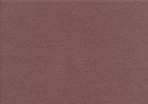 T2500 Mudd ljusbrun