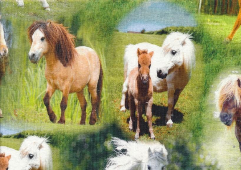 T2511 Trikå ponny