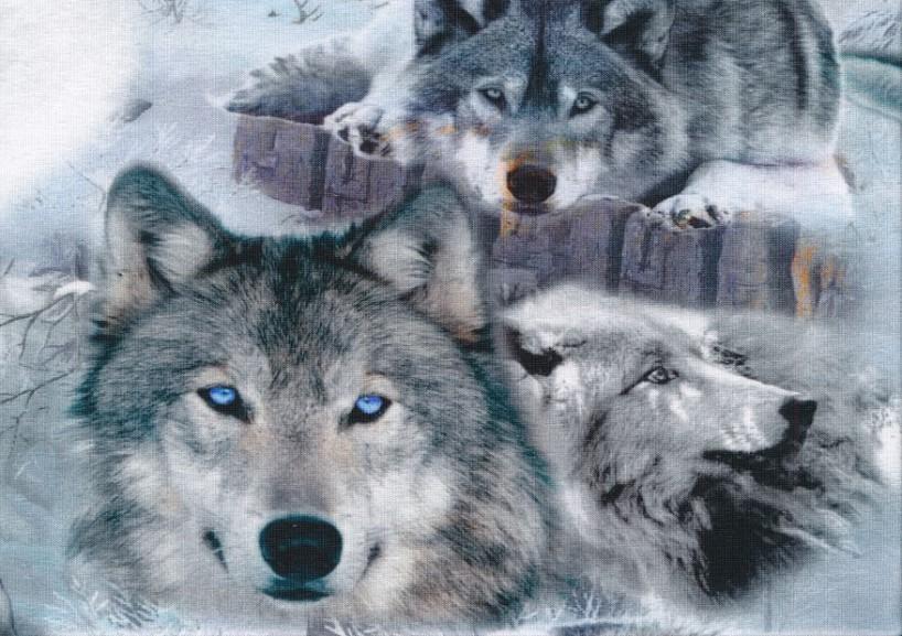 T2589 Jersey Fabric Wolf Friends