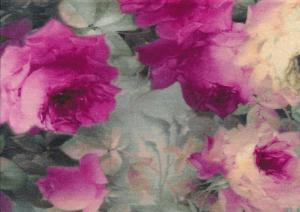 T3025 Jersey Fabric Roses In Pink Colours