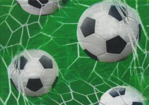 T4603 Jersey Fabric Football Goal