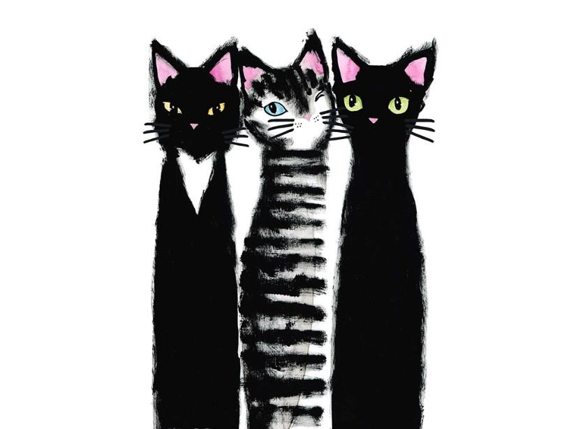 T5110 Joggingtyg Tre svarta katter (40 x 50 cm)