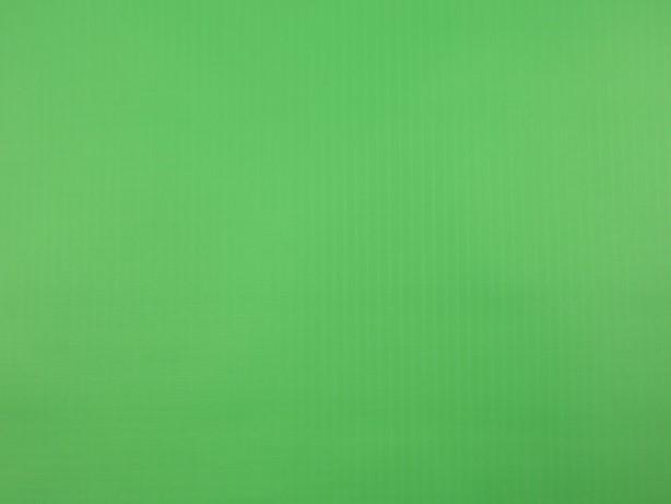 Ripstop neongrön