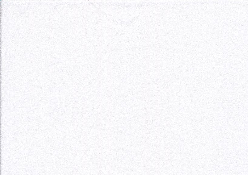 Polyester Crepe Fabric white