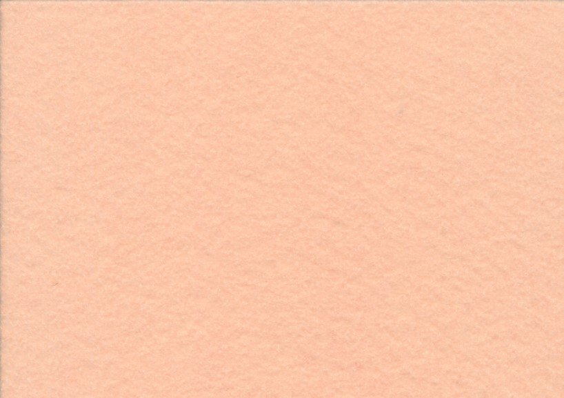 X300 Felt Fabric apricot (20 x 30 cm)