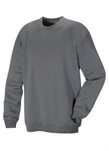 Allbany Sweatshirt
