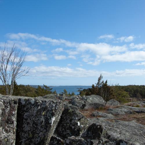 Uppe på Telegrafberget på Runmarö