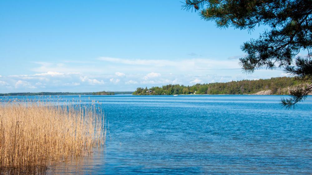 I Vållsvik längs med Låssaleden kan man bada