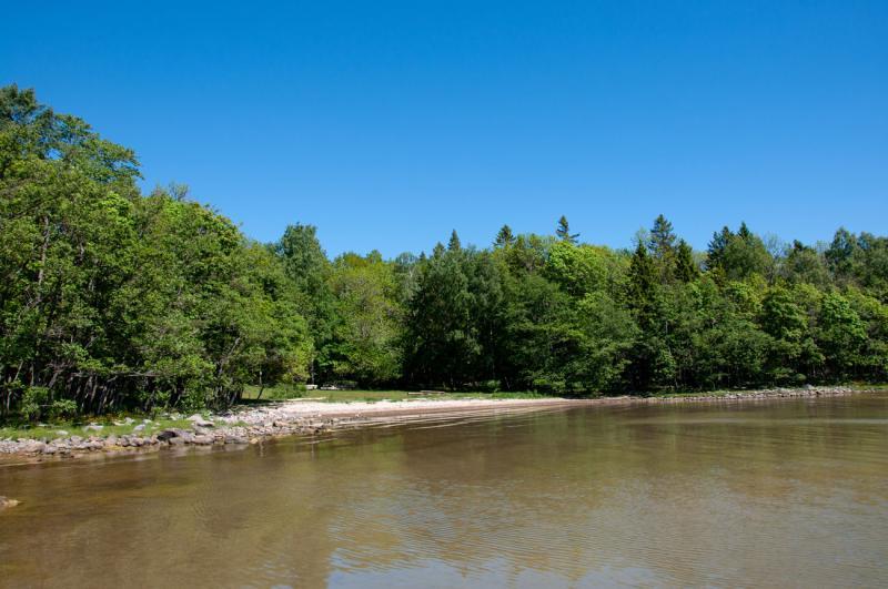 Mimmis vik i Riddersholms naturreservat är en perfekt plats för ett sommardopp