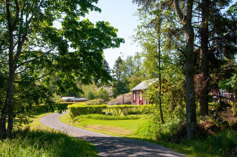 En smal väg löper genom den 5 km långa ön Tjockö