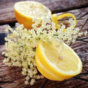 Fläderblom & Citrus