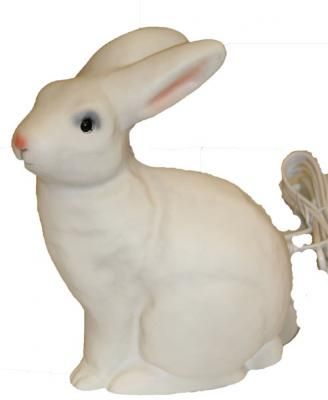 Kaninlampa